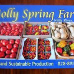 HollySprings-Farm tomatoes produce