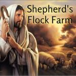 ShepherdsFlockFarm