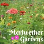 Meriwether Gardens